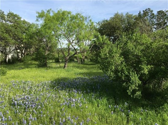 Single Lot - Horseshoe Bay, TX (photo 4)