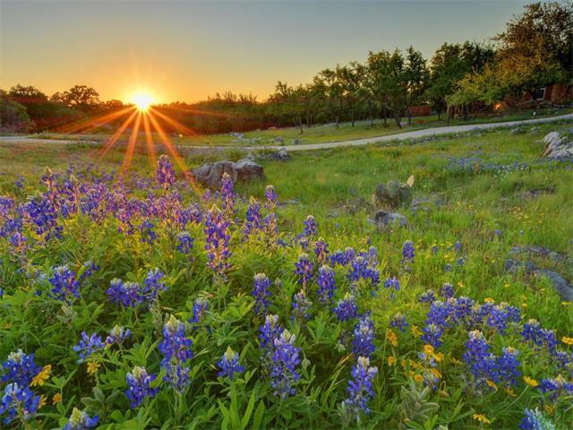 House - Spicewood, TX (photo 2)