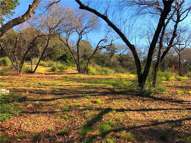 Single Lot - West Lake Hills, TX (photo 1)