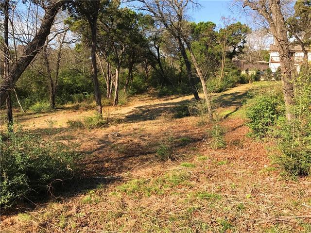 Single Lot - West Lake Hills, TX (photo 3)