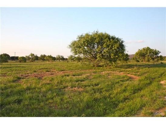 Single Lot - Kingsland, TX (photo 3)