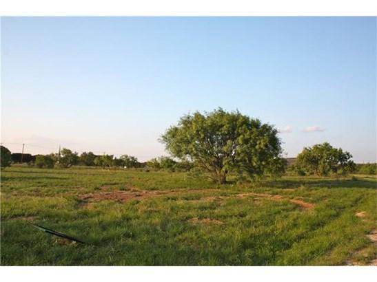 Single Lot - Kingsland, TX (photo 5)