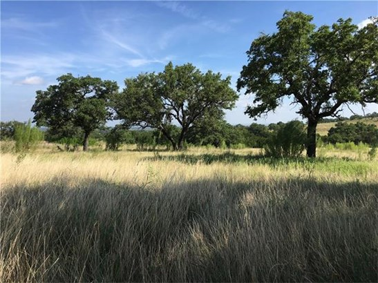 Single Lot - Marble Falls, TX (photo 1)