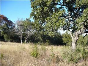 Single Lot - Lakeway, TX (photo 2)