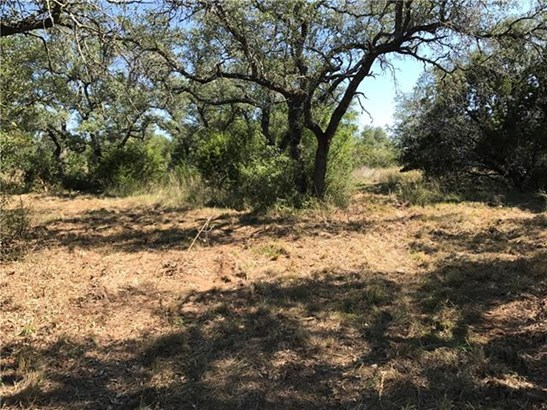 Single Lot - Spicewood, TX (photo 2)