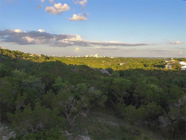 Single Lot - West Lake Hills, TX (photo 4)