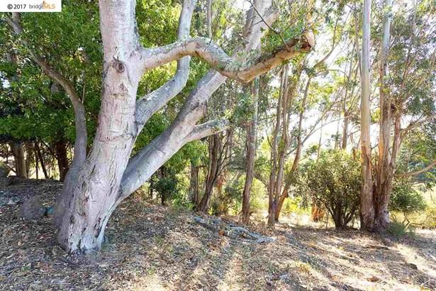817 Shevlin Dr, El Cerrito, CA - USA (photo 2)