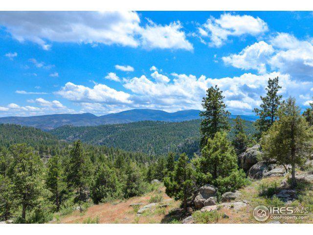 119 Castle Canyon Road, Livermore, CO - USA (photo 4)