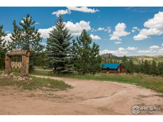 925 Springmeadow Way, Red Feather Lakes, CO - USA (photo 3)
