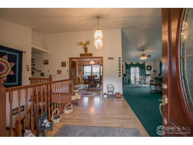 925 Springmeadow Way, Red Feather Lakes, CO - USA (photo 5)