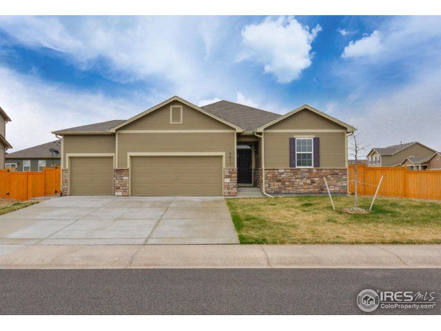 3611 Cornflower Street, Wellington, CO - USA (photo 1)