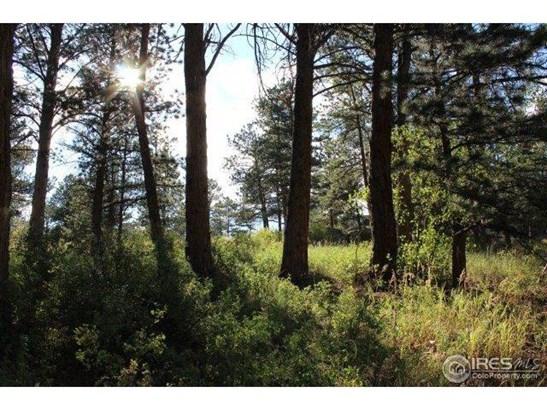 0 Macgregor Avenue, Estes Park, CO - USA (photo 2)