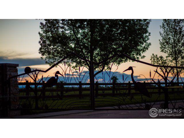 3946 Taliesin Way, Fort Collins, CO - USA (photo 1)