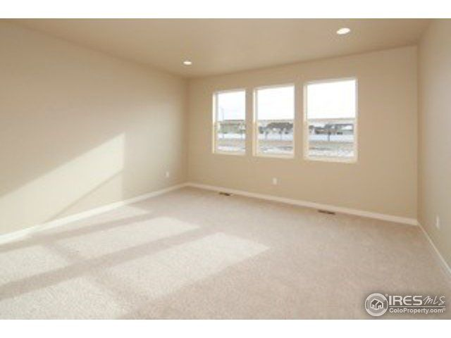 3926 Eucalyptus Street, Wellington, CO - USA (photo 3)