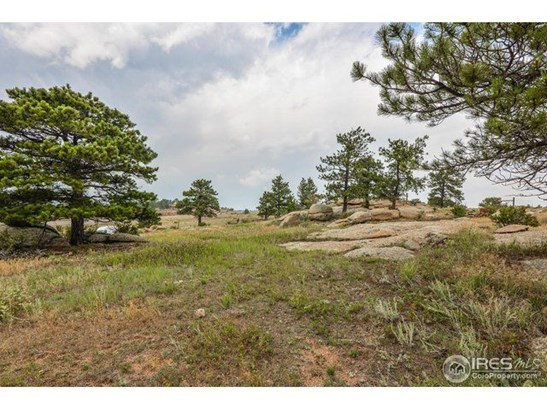 36292 N Highway 287, Livermore, CO - USA (photo 4)