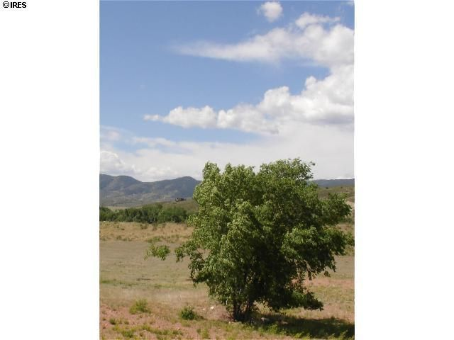 4490 Del Colina Way, Laporte, CO - USA (photo 4)