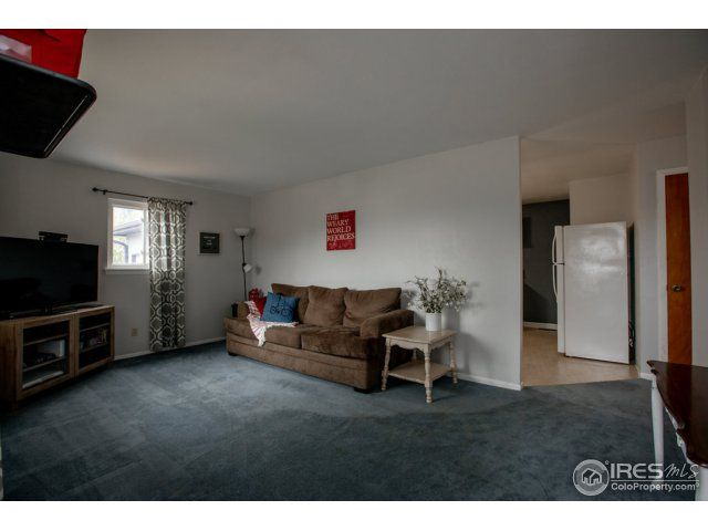 3720 Grant Avenue, Wellington, CO - USA (photo 4)
