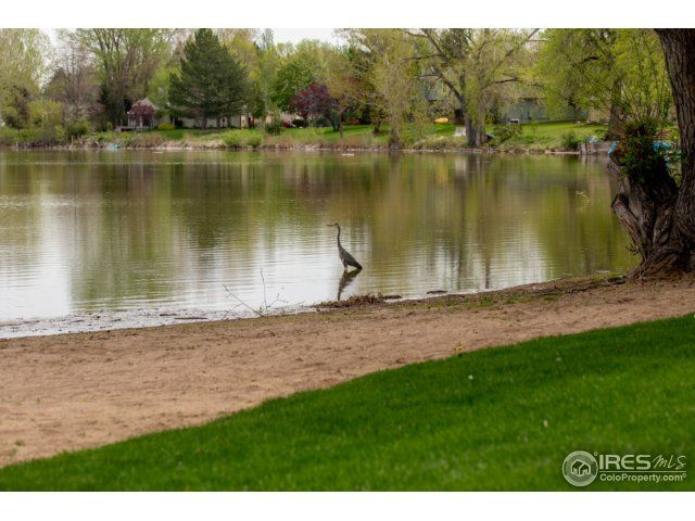1512 Brentford Lane, Fort Collins, CO - USA (photo 3)