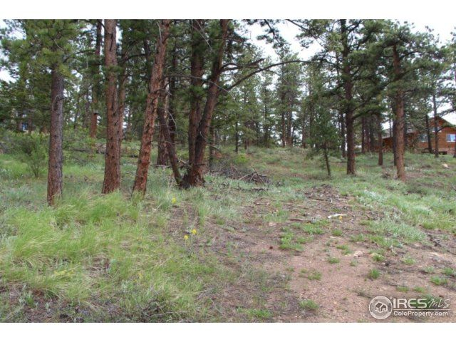 24210 W County Road 74e, Red Feather Lakes, CO - USA (photo 3)