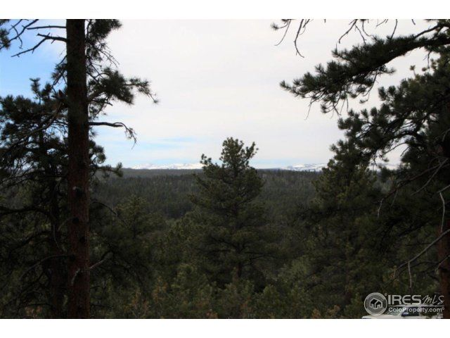 24210 W County Road 74e, Red Feather Lakes, CO - USA (photo 4)