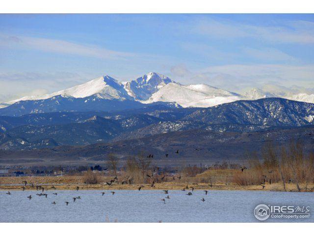 2808 Majestic View Drive, Timnath, CO - USA (photo 5)