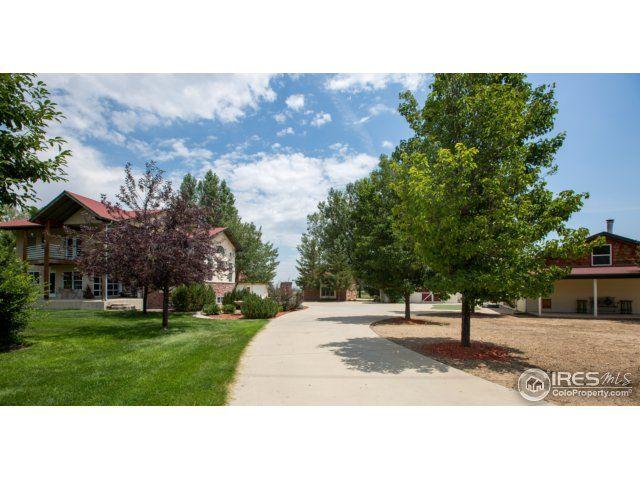 23955 County Road 3, Loveland, CO - USA (photo 4)