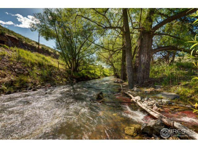 215 Willow Patch Lane, Bellvue, CO - USA (photo 2)