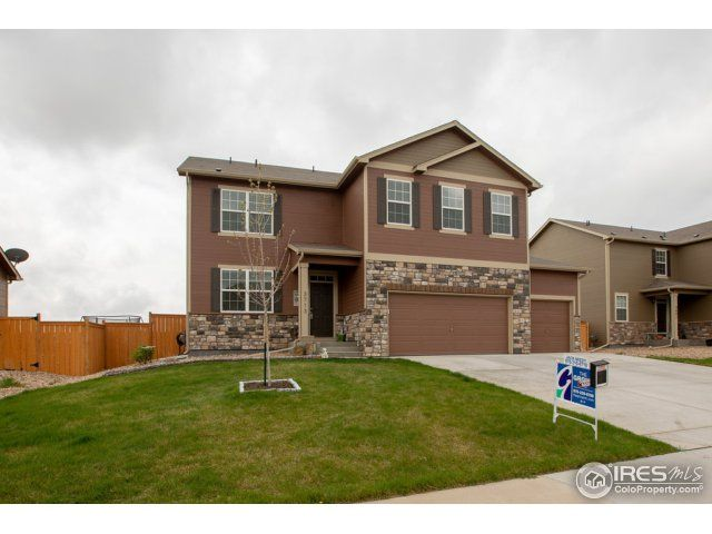 3713 Torch Lily Street, Wellington, CO - USA (photo 1)