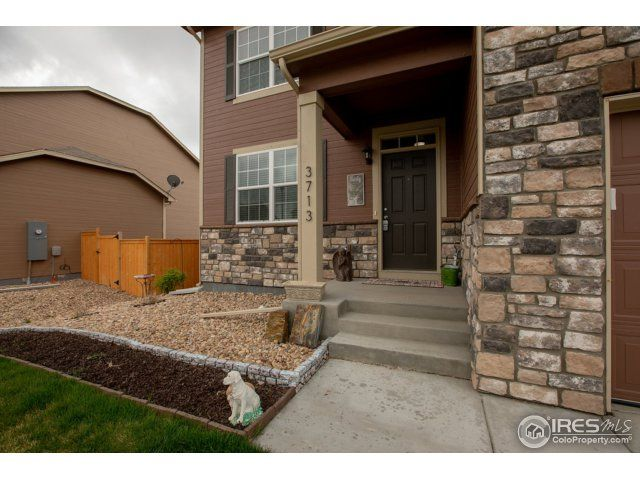 3713 Torch Lily Street, Wellington, CO - USA (photo 3)