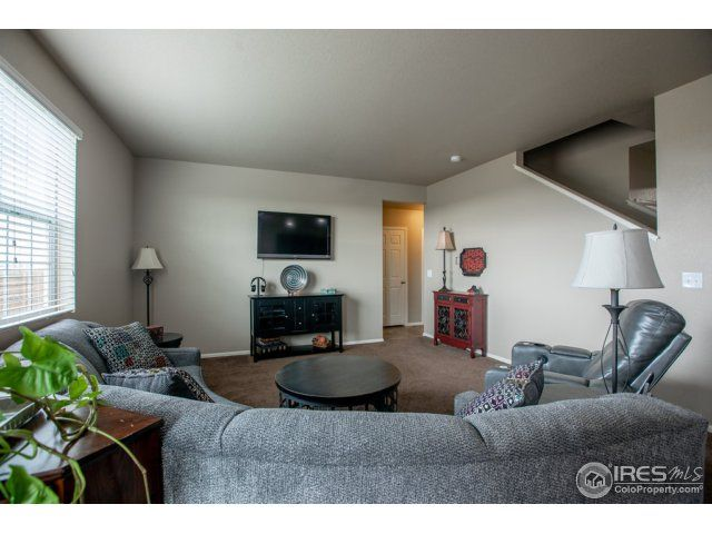 3713 Torch Lily Street, Wellington, CO - USA (photo 4)