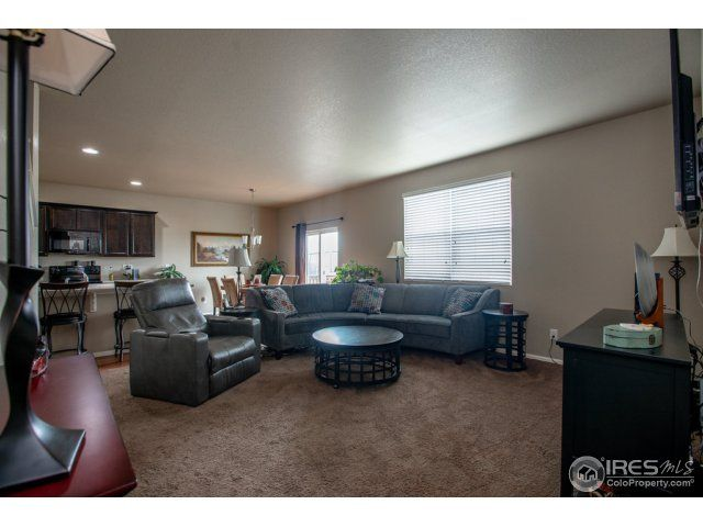 3713 Torch Lily Street, Wellington, CO - USA (photo 5)