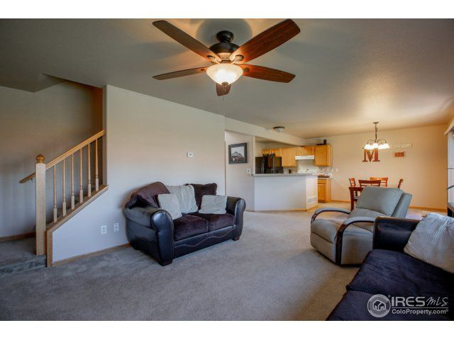 3542 Preakness Way, Wellington, CO - USA (photo 4)