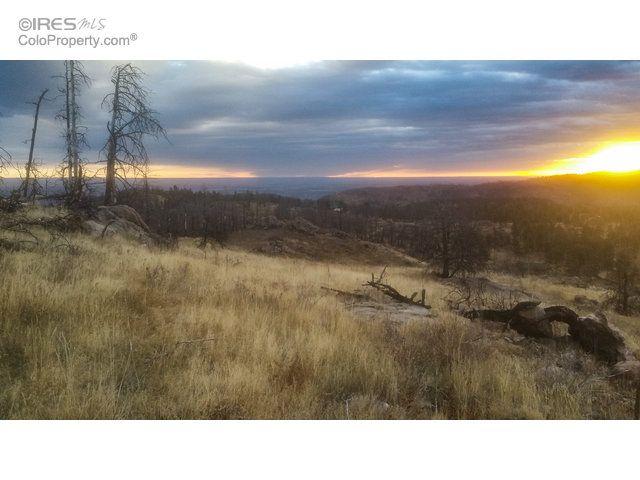 0 Davis Ranch Road, Bellvue, CO - USA (photo 3)
