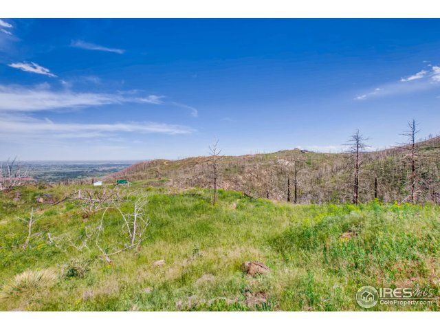 1500 Whale Rock Road, Bellvue, CO - USA (photo 2)