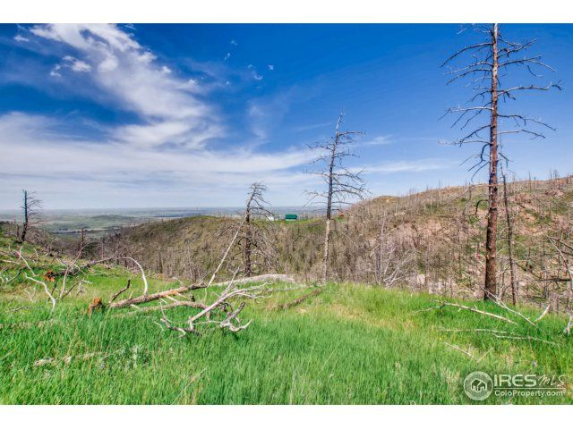 1500 Whale Rock Road, Bellvue, CO - USA (photo 4)