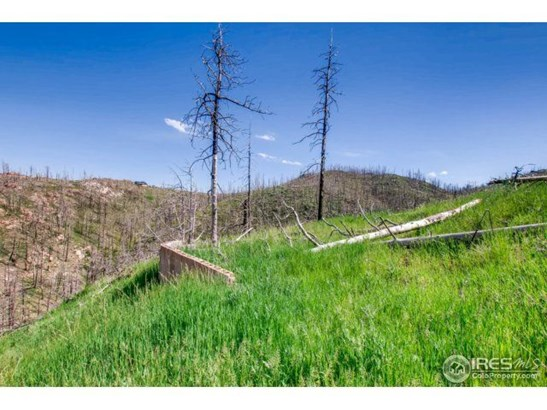 1500 Whale Rock Road, Bellvue, CO - USA (photo 5)