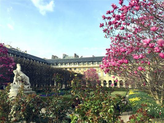 Paris 1st - FRA (photo 2)