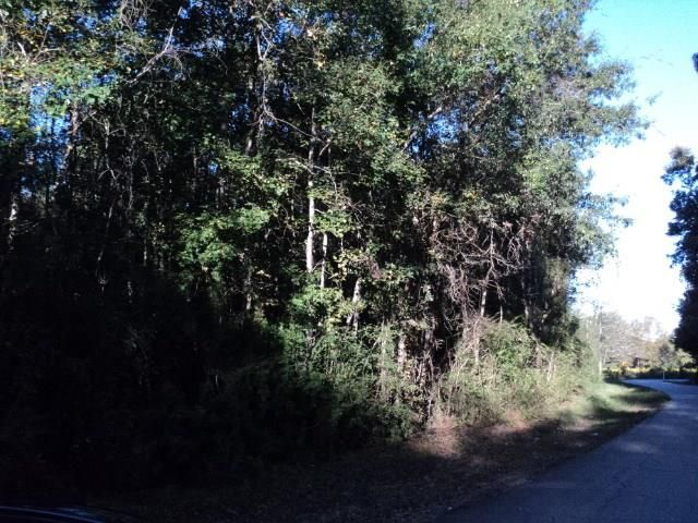7 Acres N Mashon Rd, Independence, LA - USA (photo 1)
