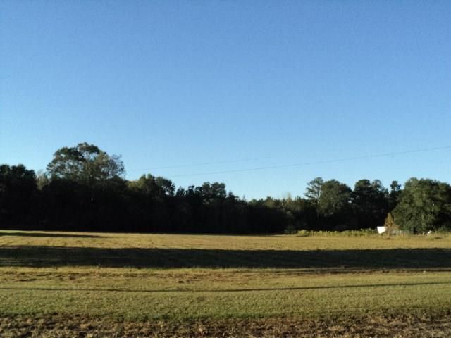 51 Acres N Mashon Rd, Independence, LA - USA (photo 3)