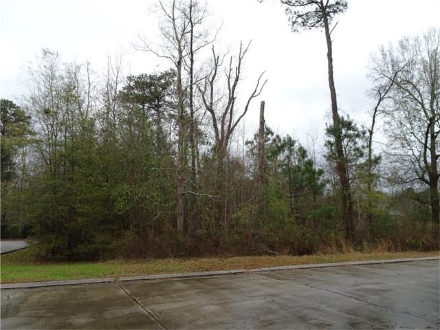 347 Oak Island Dr, Mandeville, LA - USA (photo 5)