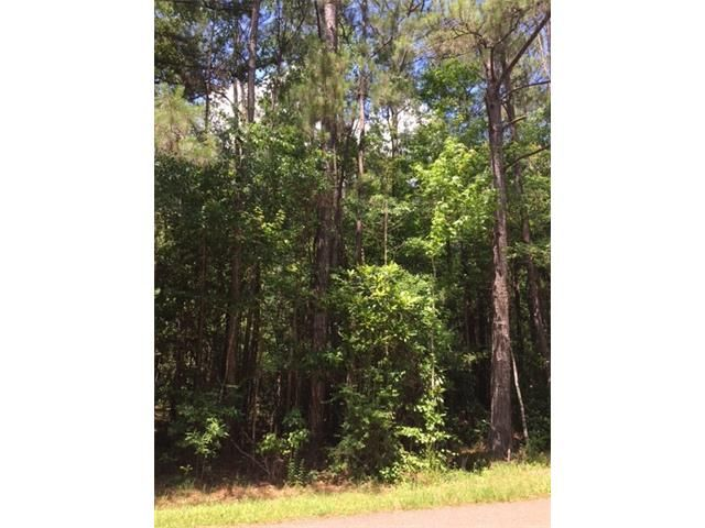 9 Acres Park Ln, Folsom, LA - USA (photo 2)