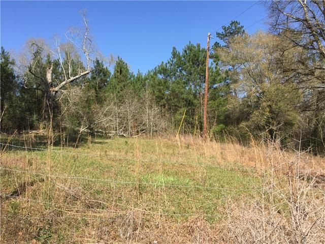 31134 Cleve Kennedy Rd, Franklinton, LA - USA (photo 1)