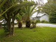 1216 Florida St, Mandeville, LA - USA (photo 1)