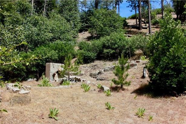 29969 Hook Creek Road, Cedar Glen, CA - USA (photo 4)