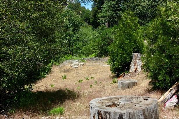 29969 Hook Creek Road, Cedar Glen, CA - USA (photo 5)