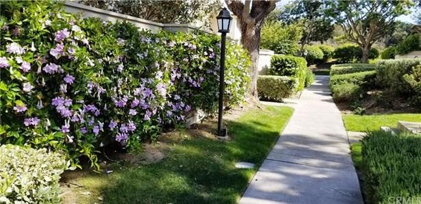 4 Morning Song 23, Irvine, CA - USA (photo 3)
