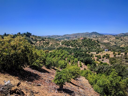 Fallbrook, CA - USA (photo 4)