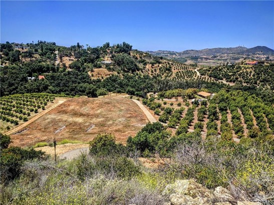 1313 Rice Canyon Road, Fallbrook, CA - USA (photo 1)