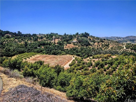 1313 Rice Canyon Road, Fallbrook, CA - USA (photo 3)