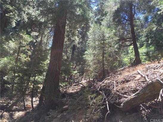 0 Reservoir, Cedarpines Park, CA - USA (photo 3)